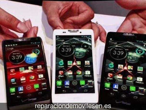 76b84202251 Reparación de móviles en Santa Cruz de la Palma , Santa Cruz de ...